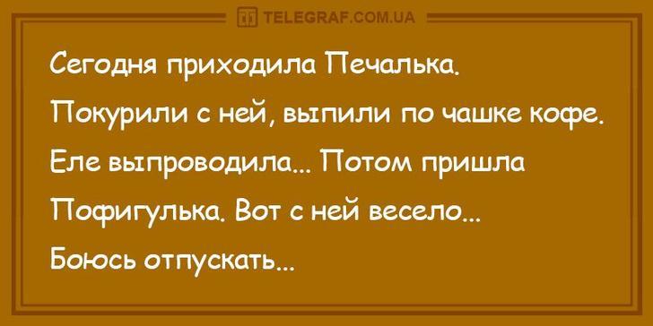 nk_hauz/-m0dluexlnbpaofvxqz5.jpg