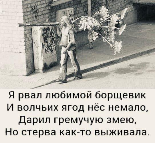 nk_hauz/-m8izvxdcysbi6rpj9rl.jpg