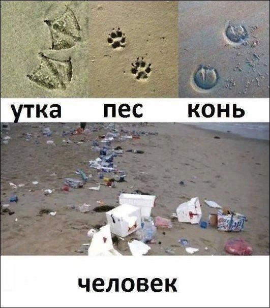 nk_hauz/-makrkijwkzcptbefaq7.jpg
