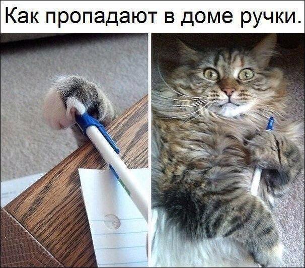 nk_hauz/-makrkyuhwurj8qyavst.jpg