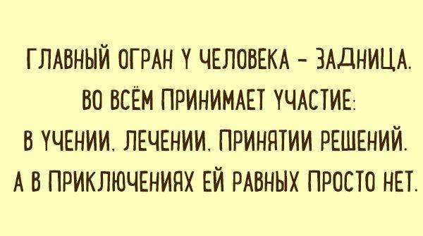 nk_hauz/-mbv_ko4dihvfzcohqyl.jpg