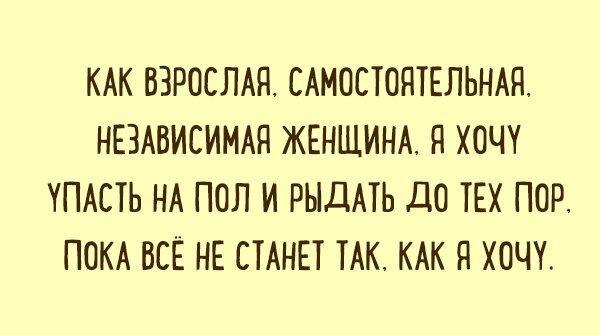 nk_hauz/-mbv_kximfyqnq0dmphz.jpg