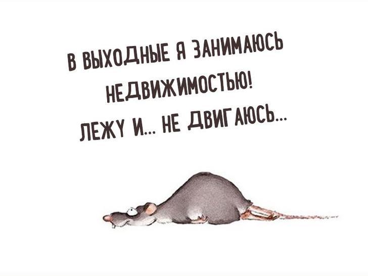 nk_hauz/-mbv_kyfyyyklfzcfjau.jpg