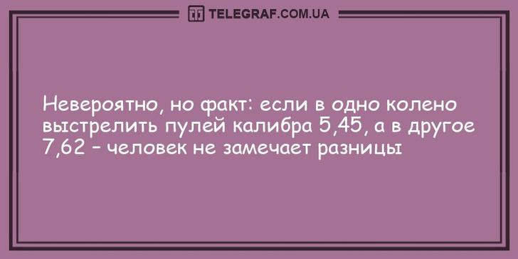 nk_hauz/-mcjpwjlyrdnlonfaotv.jpg