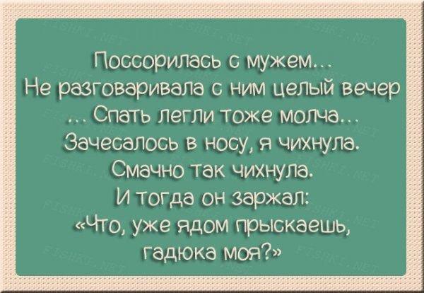 nk_hauz/-mfls3q1cpsqwehfl6zy.jpg