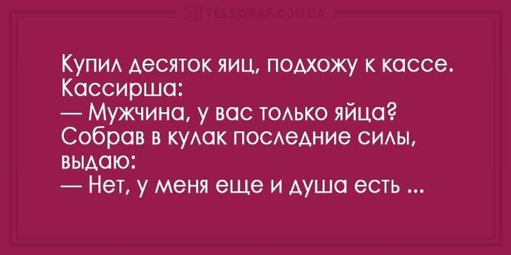 nk_hauz/-mfscp-bo2ojurt5aqij.jpg