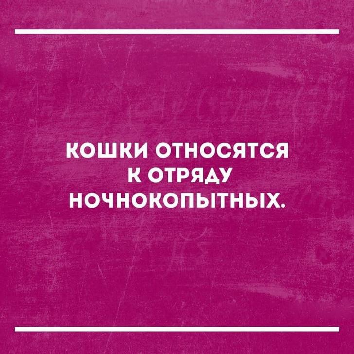 nk_hauz/-mfscpdh9ol9bhfvfvkx.jpg