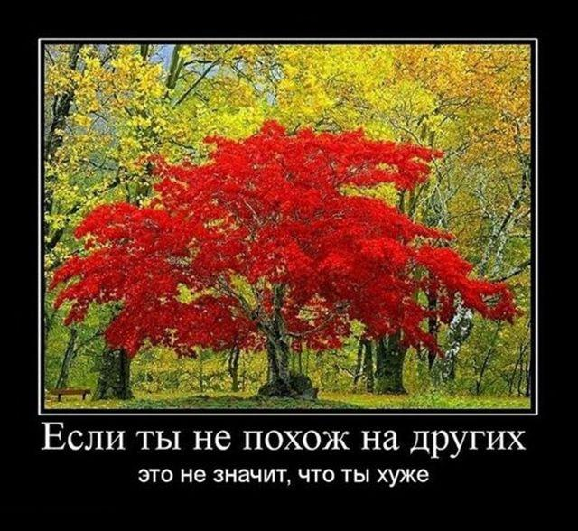 nk_hauz/-mjcty47yhzu-6b66ie2.jpg