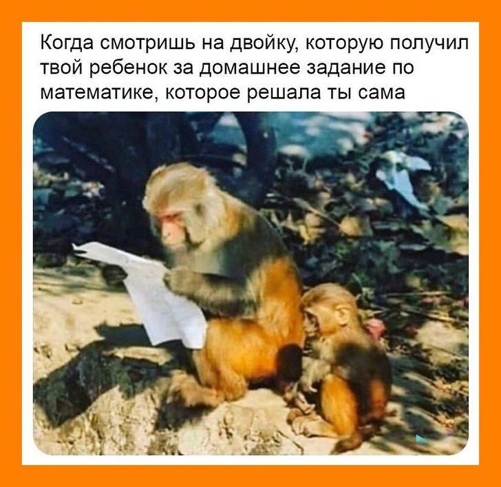 nk_hauz/-mjctyizpwavstxmfi_7.jpg