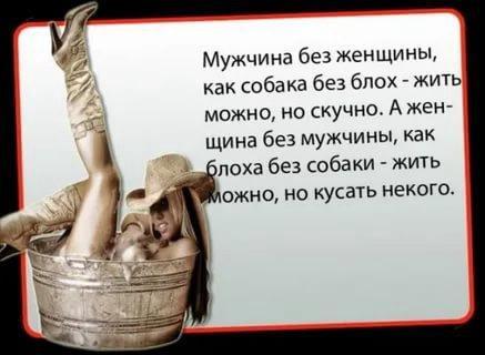 nk_hauz/-mktsv5nj5rkxpsrmswi.jpg
