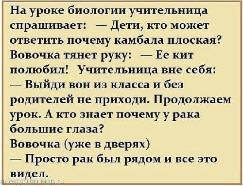 nk_hauz/-mktsvsrxo_k2cqswywv.jpg