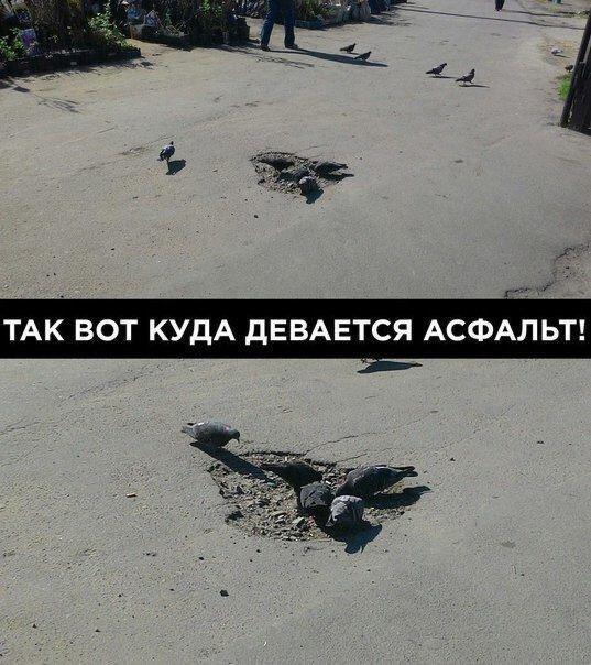 nk_hauz/-mktswqnnyv0hynpybts.jpg