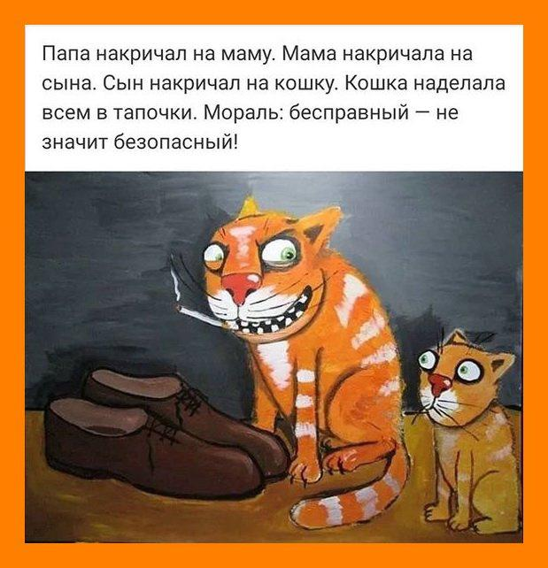 nk_hauz/-mktswra50mmzhean4e5.jpg