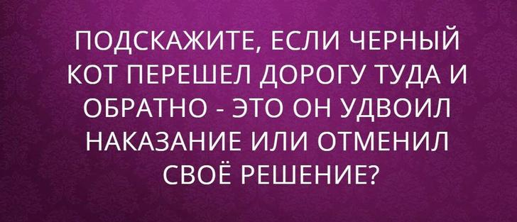 nk_hauz/-mxaiw4tqnphbv1cz5fk.jpg