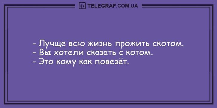 nk_hauz/-mxg7aavolmtzqr4exs9.jpg