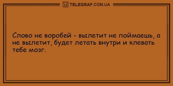 nk_hauz/-mydhnyd_tjdpsx4mcmm.jpg
