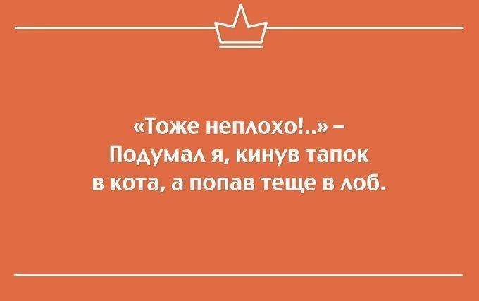 nk_hauz/7ThyDiI7R.jpeg