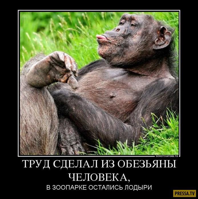 nk_hauz/bvfjtC4ng.jpeg
