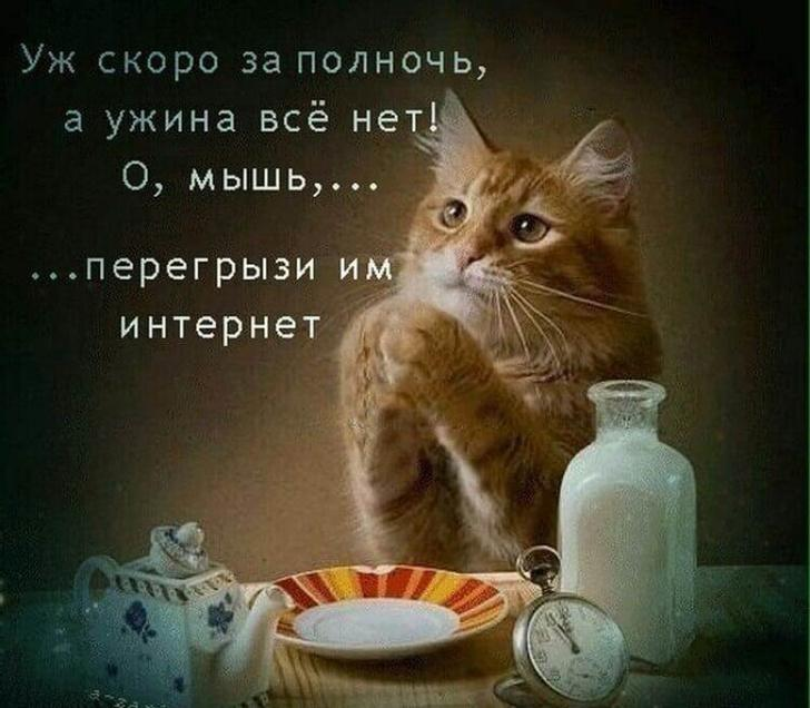 nk_hauz/h9OmwtD7R.jpeg